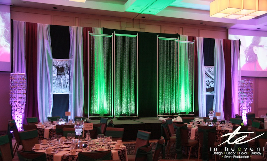 anniversary gala Girl Scout's 100th Anniversary Gala Girl Scouts 2012 15