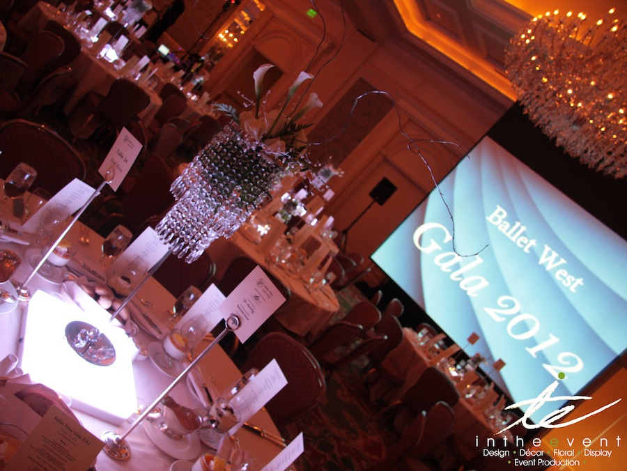 Event Florals LED Light Boxes LED Light Boxes Ballet West 2012 40