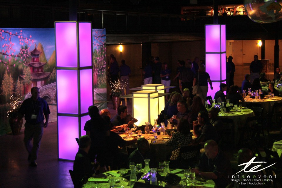 ambient lighting custom themed parties