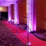 Carpets & Stanchions