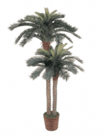Faux Palm Tree (large & small)