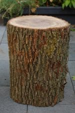 Log Stool for parties