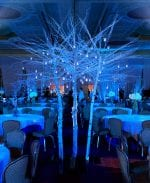 White Branch Winter Tree | Event Decor