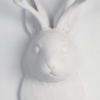White Jackrabbit Wall Mount