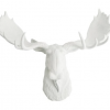 Moose Head Wall Mount
