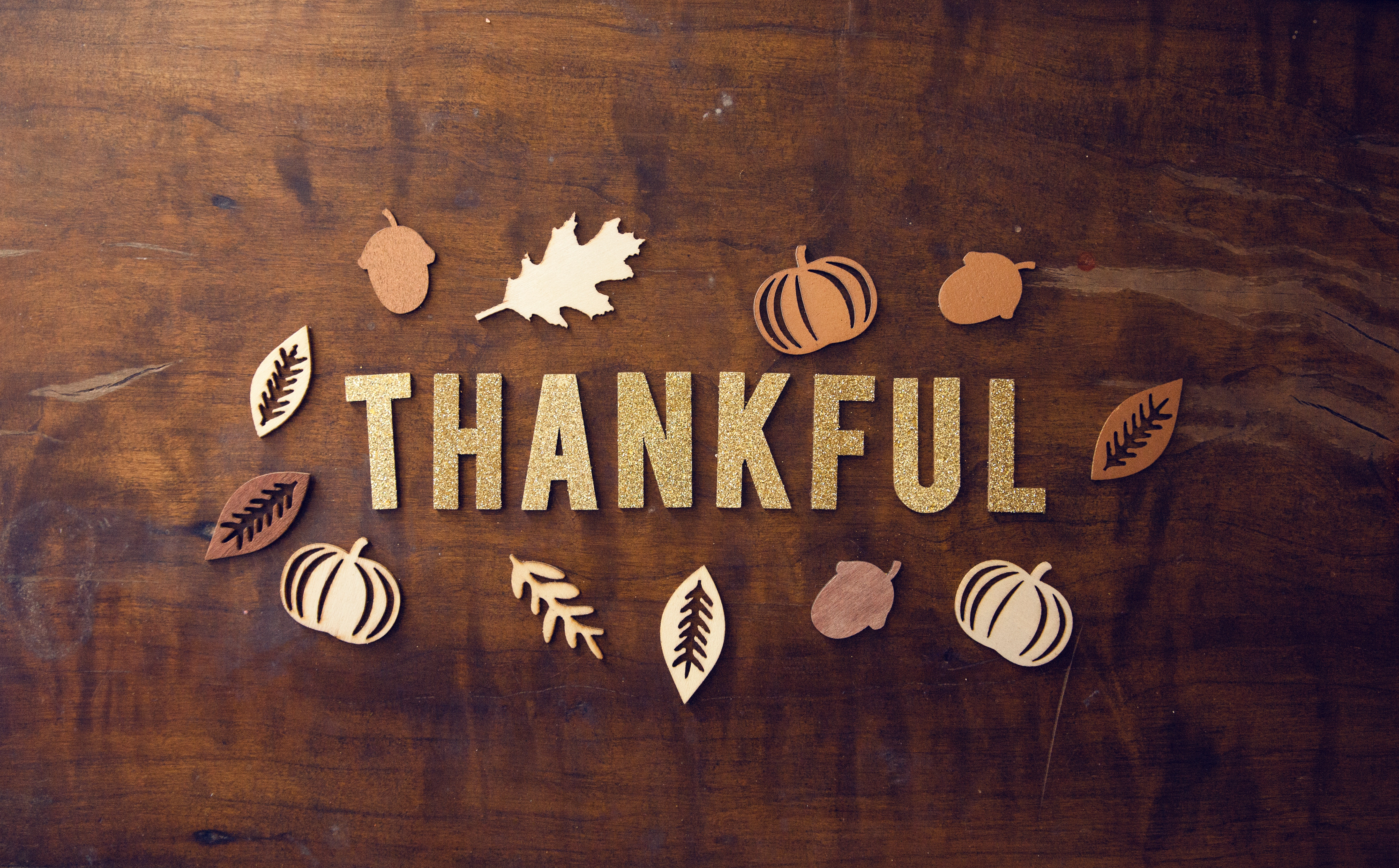 thanksgiving Tips for a Flawless Thanksgiving Event! pro church media 441073 unsplash 1